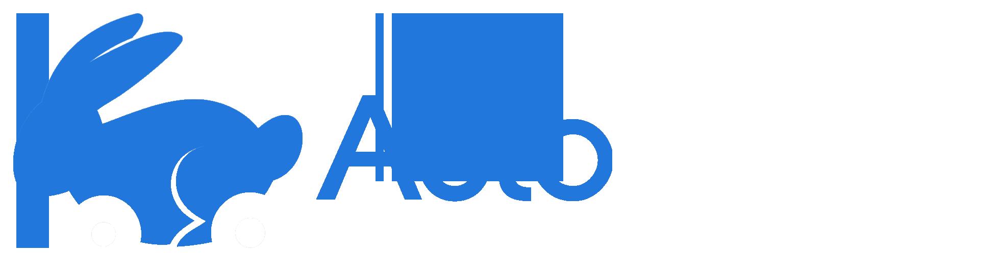 AUTOBUNNY DEALER SOLUTIONS